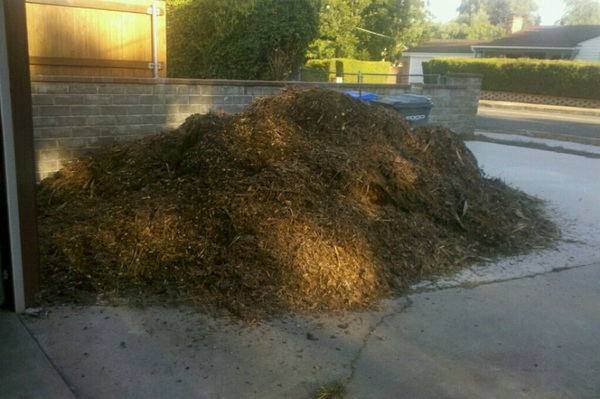 I accidentally a pile of mulch this morning.