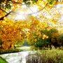 wandeling in de herfst #buienradar