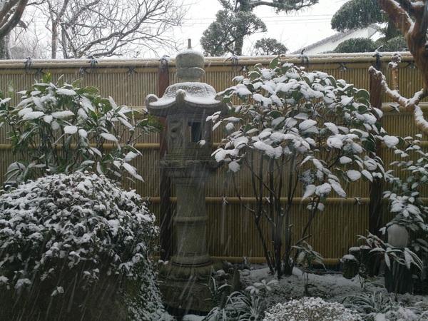しかし、福岡の雪は凄かった。