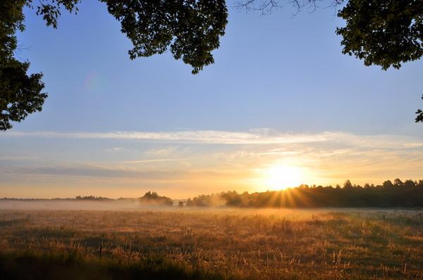 een prachtige vrijdagochtend #buienradar