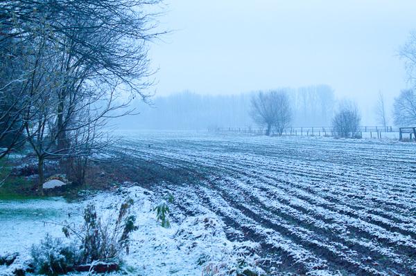 Eindelijk eens een beetje sneeuw in Vlaanderen. #buienradar