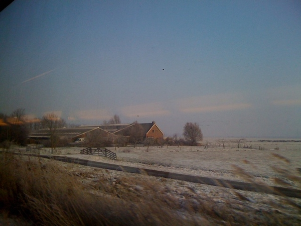 W/ train back to AMS through winterland, after meeting for new assignment for Arts Faculty Utrecht
