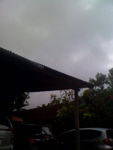 また今日も雨!!