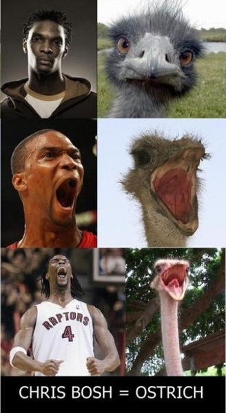 Haha #chrisbosh