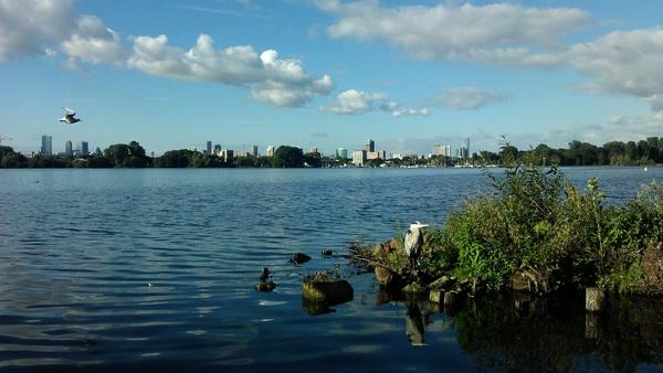 Kralingse Plas, natuur met zicht op de skyline van Rotterdam. #buienradar