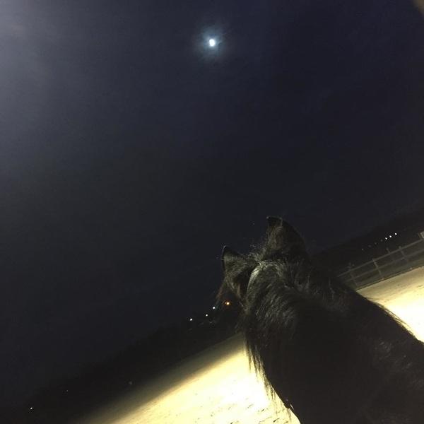 Riding in the dark with the best 🌚🌙💛 #uniek #bĺack #moon #dark #training