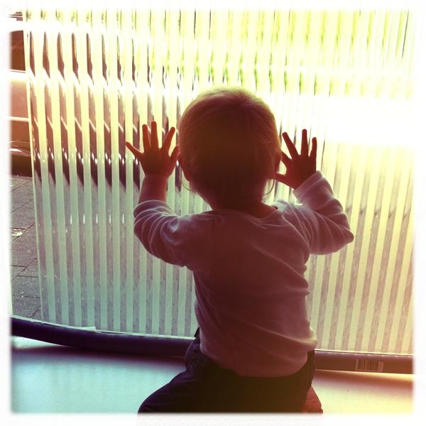 Fletcher of the day: window