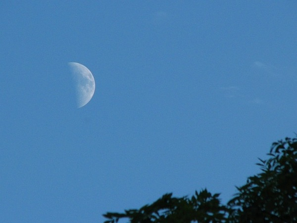 Evening moon  26/6/12 @badas_tweets @newburyastro  #moonwatch #wonders