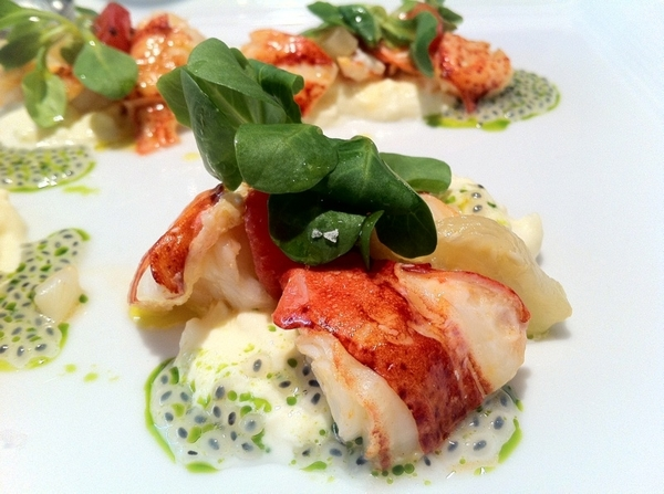 After crostini of uni w lardo (!!) we tasted lobster with basil seeds and mâche