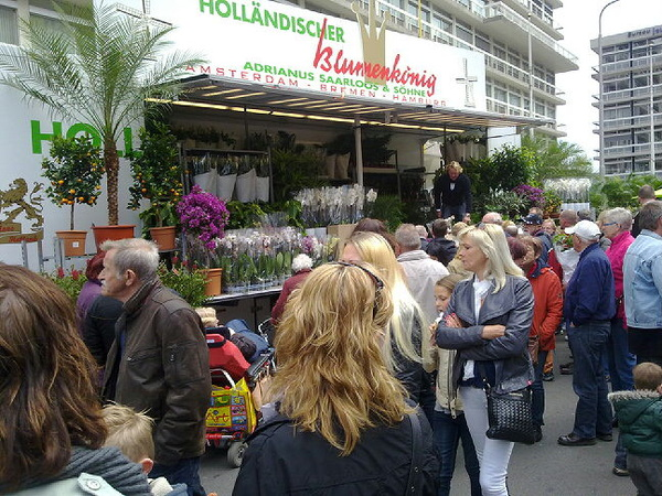 bloemen mark in Leeuwarden.g #058