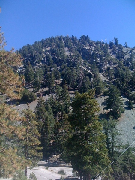 Went for a hike up At Mt. Baldy today. So beautiful on this Indian summer day.