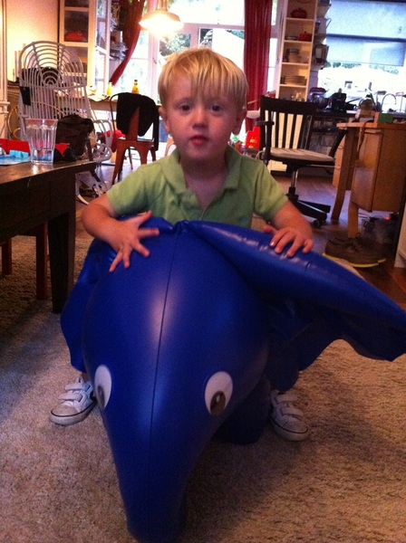 Fletcher of the day: Elephant