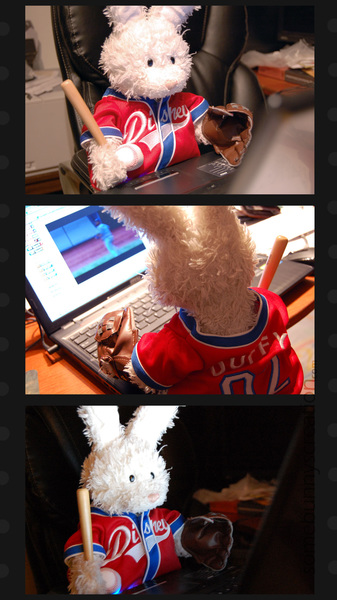 Rufus watching a baseball game on itguy's laptop..