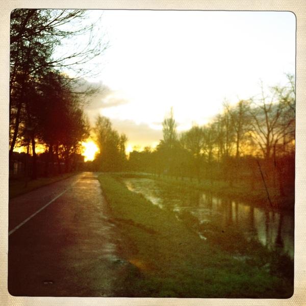 Morning run in the morning sun