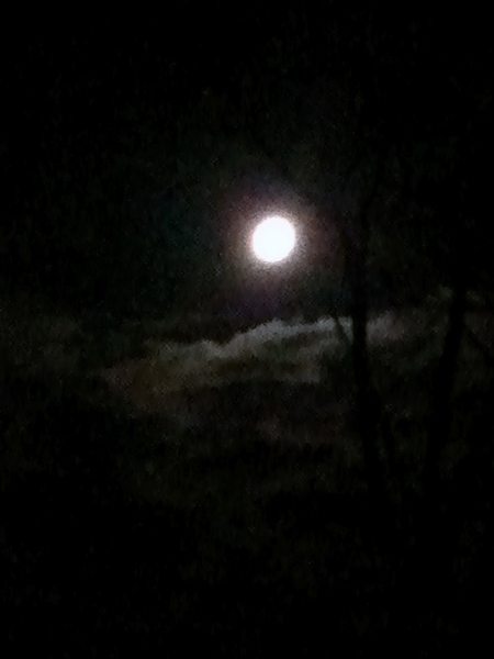 @KeithOlbermann Late night/ early morning moon 3: Yes, s that is a tree :)