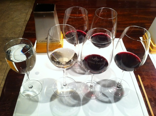 Catena Winery, Mendoza: boy do these folks know how to lead a wine tasting!