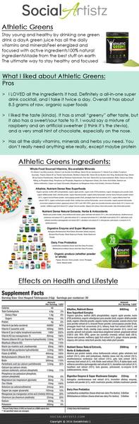 Social Artistz Infographics