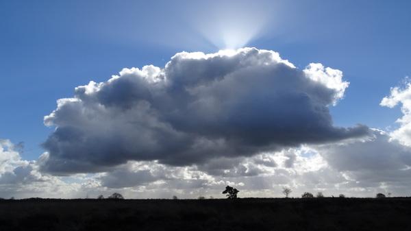 Prachtige wolken vandaag!  #buienradar
