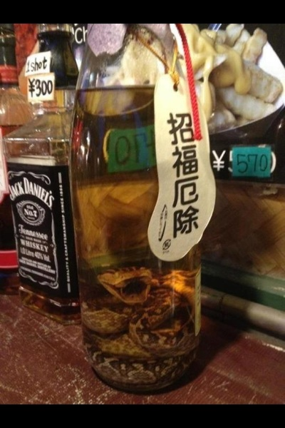 @ChipRosa imma send u a bottle of Habu sake !!!!