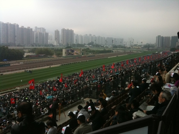 Lots of people at shatin racecourse #cxhkir
