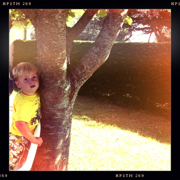 Fletcher of the day: tree climber