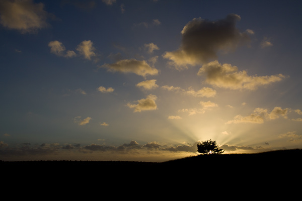 Na regen komt zonneschijn op het Rozendaalse Veld #buienradar