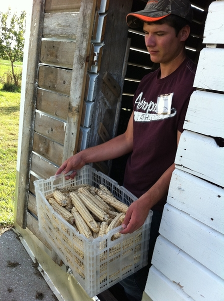 Will Travis with a little of their harvest of rescued heirloom Iroquois white corn. They parch it & stone-grind it