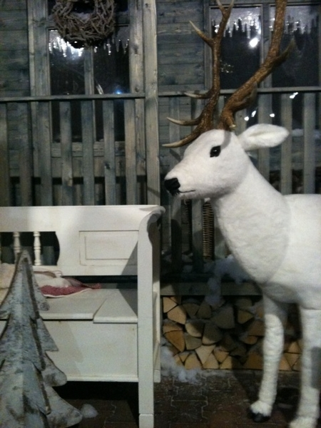 Rudolf the blacknose reindeer has come to town en inspireert! #interieur #Zwolle #styling #kerst