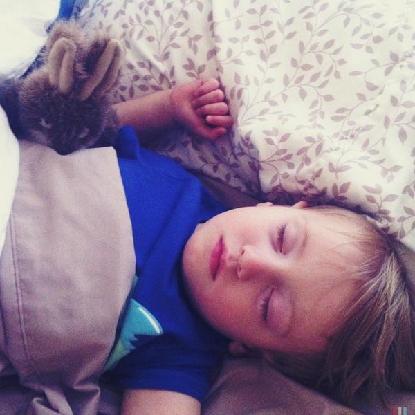 Fletcher of the day: sleepy boy