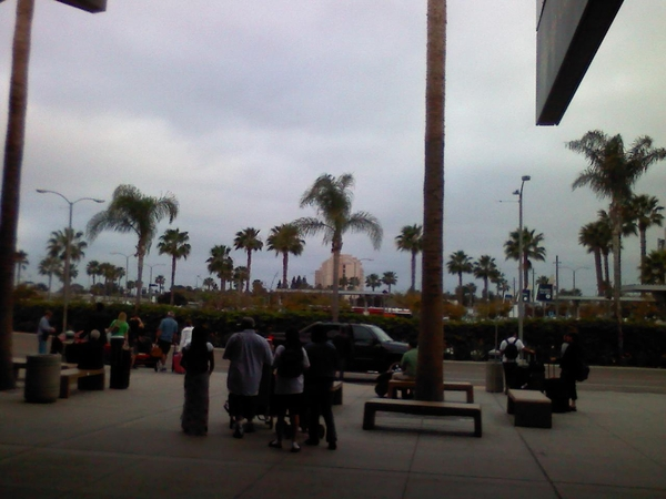 Safe and sound at san diego