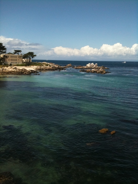 Turned out to be a gorgeous day in Monterey.