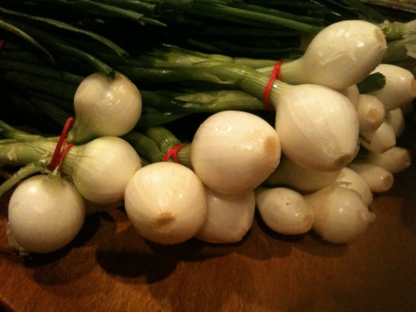 Beautiful Nichols Farms knob onions ready for the woodburning grill in Frontera