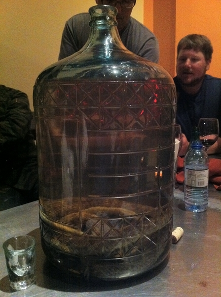 La Qurrencia: unforgettable meal 4 r crew. Miguel Angel&Judith r unparalleled hosts, ending w rattlesnake tequila!
