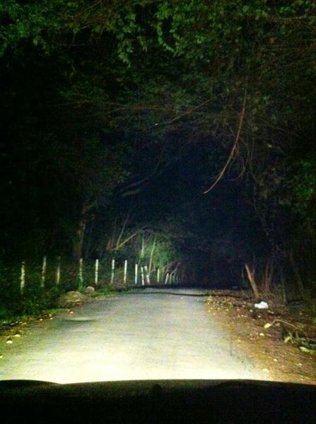 así o más tenebroso el camino por donde voy?!! me estoy muriendo de miedo, lo juro #noesbroma