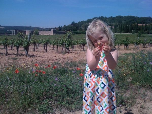 Flowergirl in the winefields