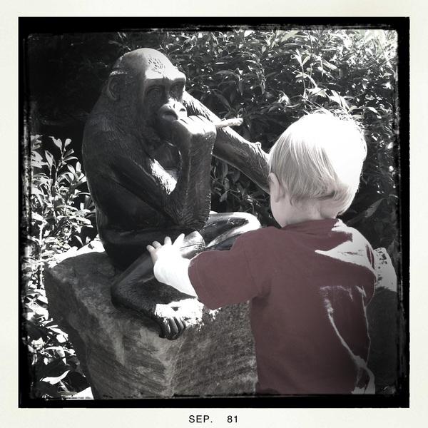 Monkeying around at Artis