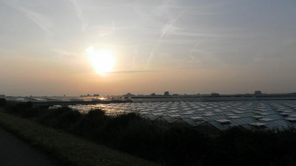 zon komt op boven het westland. wordt dagje zweten in de kassen #buienradar