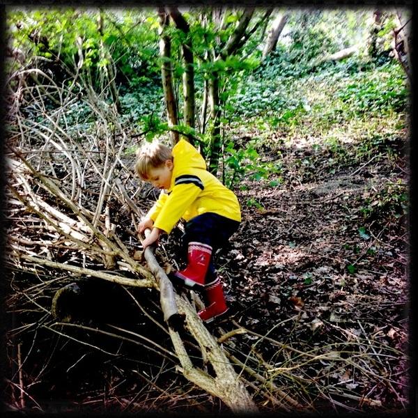Fletcher of the Day: Tree climber